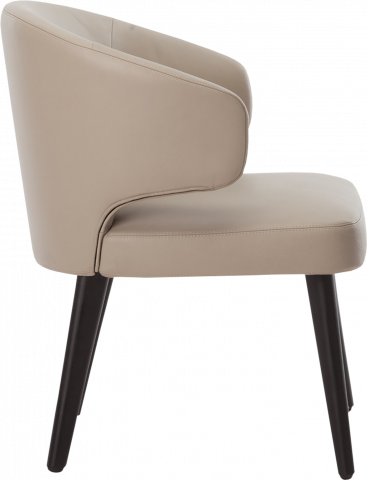 Aston Dining Chair