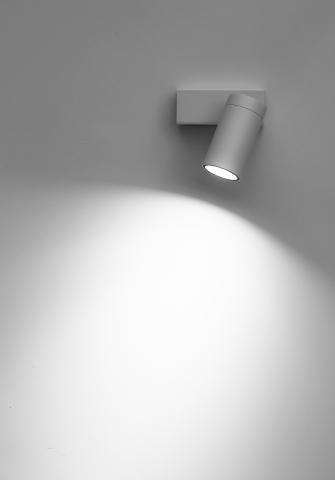 Dot P