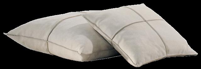 Braque Cushion